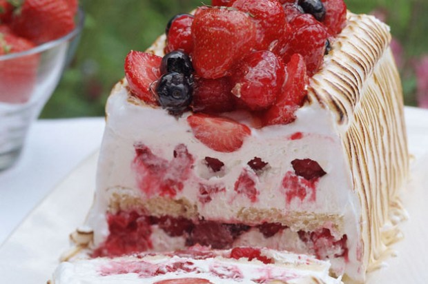 Raspberry Meringue Terrine
