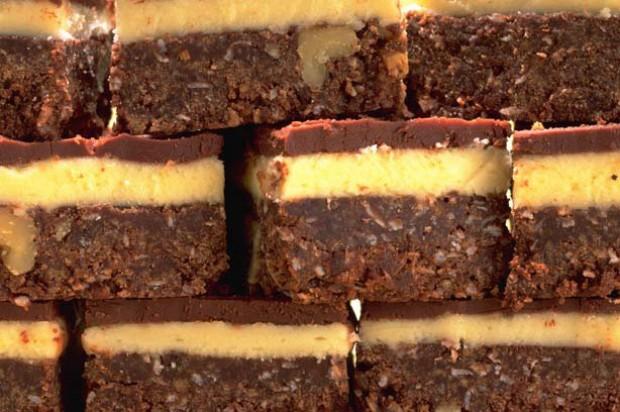 Chocolate Coconut Squares