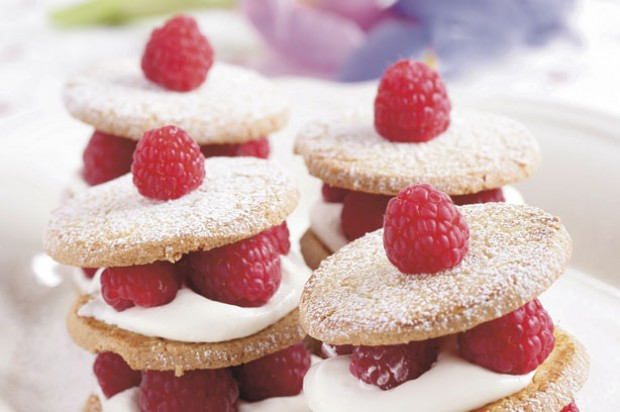 Raspberry biscuit towers