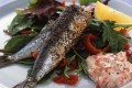 Grilled Sardines with Pepper Sauce