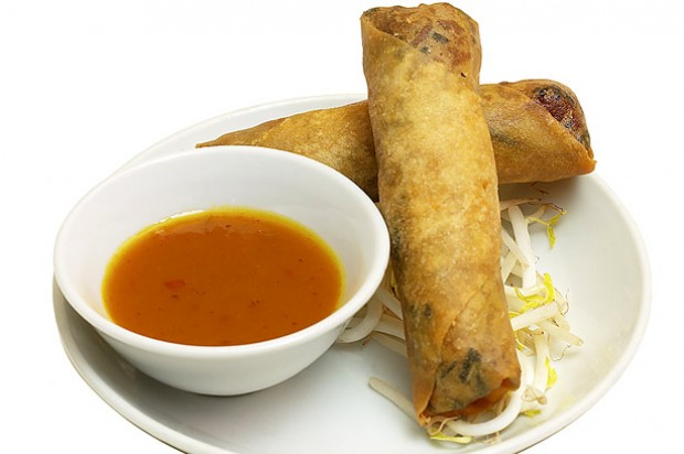 Spring rolls with oriental dip