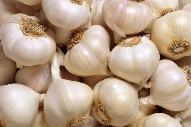 Colds and flu: Garlic
