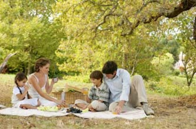 Family having a picnic in a park_ jupiter unlim