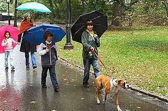A family walking their dog in the park in the rain