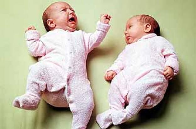 newborn baby twins_rex