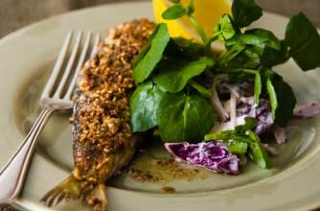 Woman's Weekly herrings in oatmeal