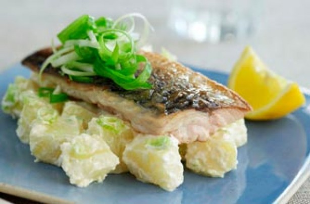 Grilled mackerel and horseradish salad recipe