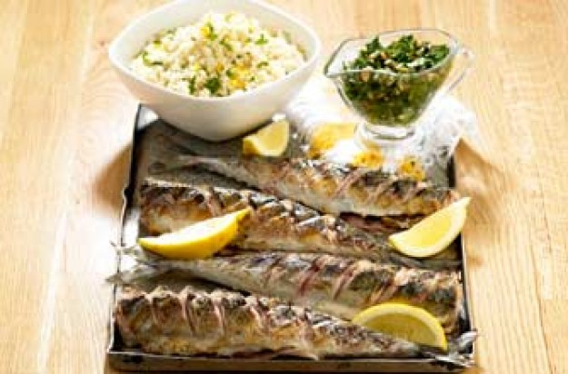 Griddled Mackerel with Moroccan dressing