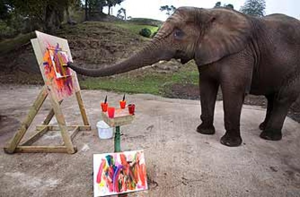 funny animals, funny animal pics, animal pics, painting, elephant