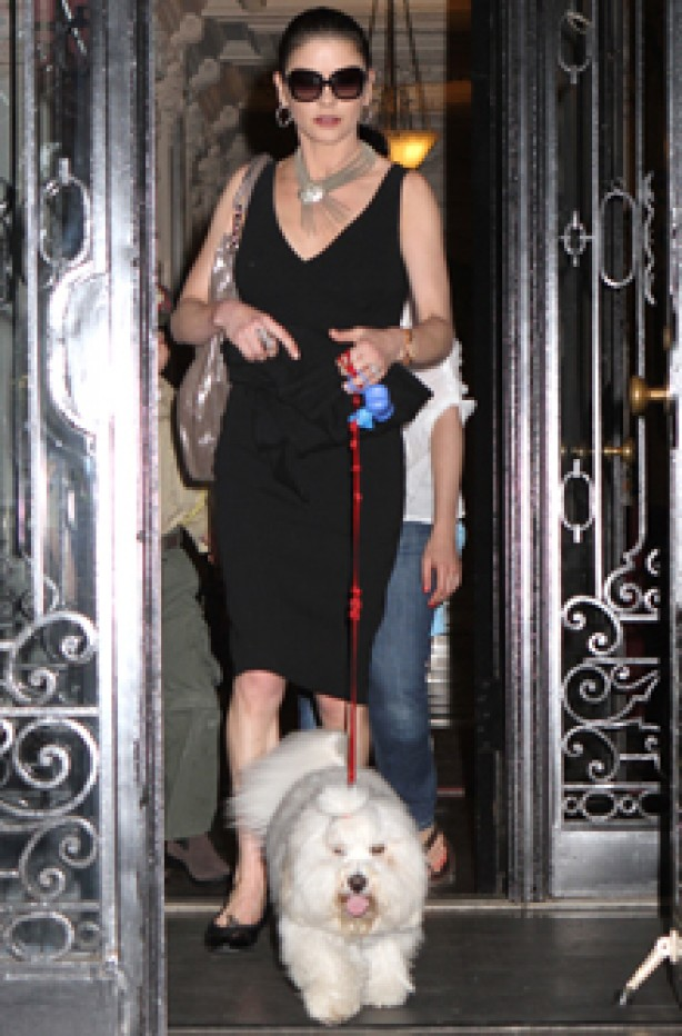 Catherine Zeta-Jones, celebrity dogs, dogs, celebrities