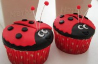 Victoria Threader's Ladybird cupcakes recipes