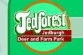Days out: JedForest deer and farm park