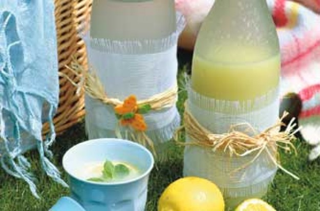 Fresh lemonade maded with sparkling or still water