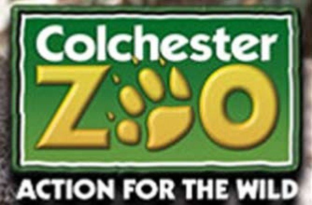 Colchester zoo discount coupons