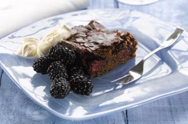 Ed Baines' chocolate and blackberry slice