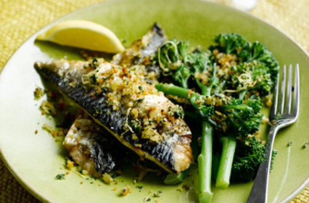 Mustard grilled mackerel with toasted lemon & basil breadcrumbs