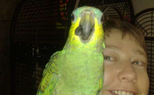 Pet pics: Bobby