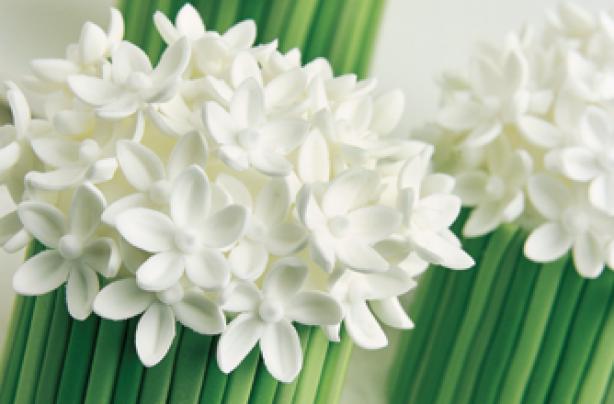 White spring posies