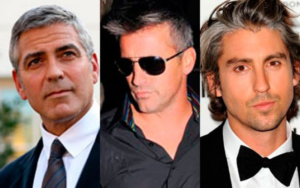 Top 10 silver foxes