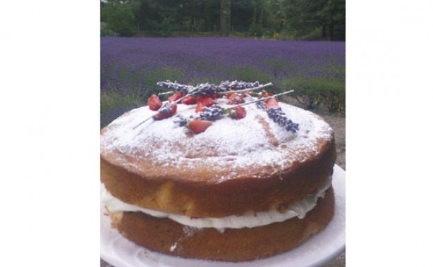 Strawberry and lavender sponge cake