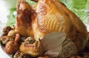 Chrismas turkey