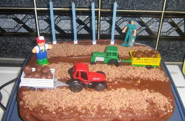 Lisa Bairstow's farm cake