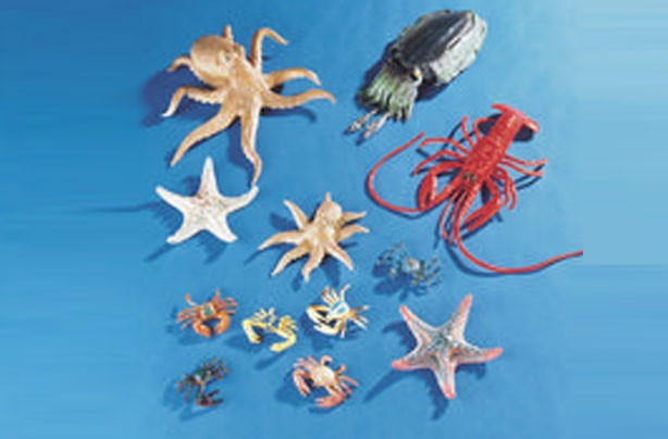50 outdoor toys for summer: Sealife set