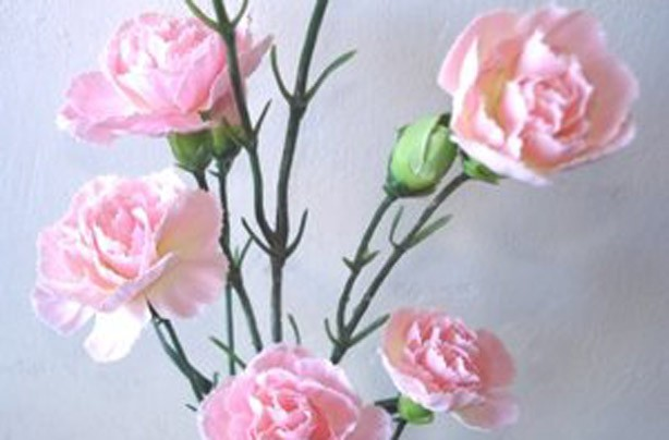 Artificial flowers: Brighten up your home for under a fiver