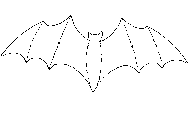 These Are The Bat Mobile Templates You Will Need To Print Out