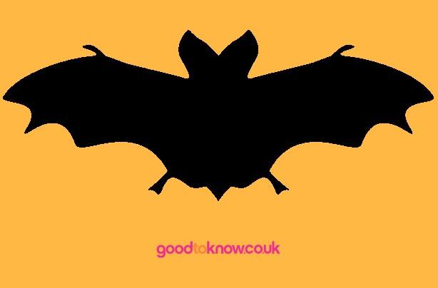 Bat Halloween pumpkin carving template
