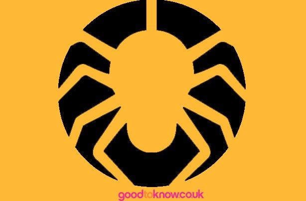 Free pumpkin carving patterns spider