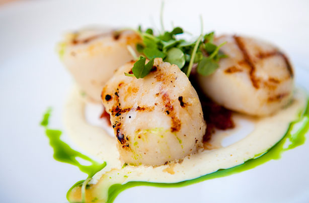 Grilled scallops with basil oil and cream recipe - goodtoknow