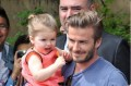 David and Harper Beckham