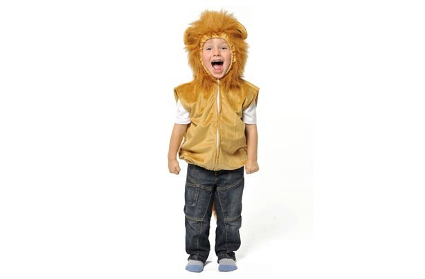 partydelights lion costume