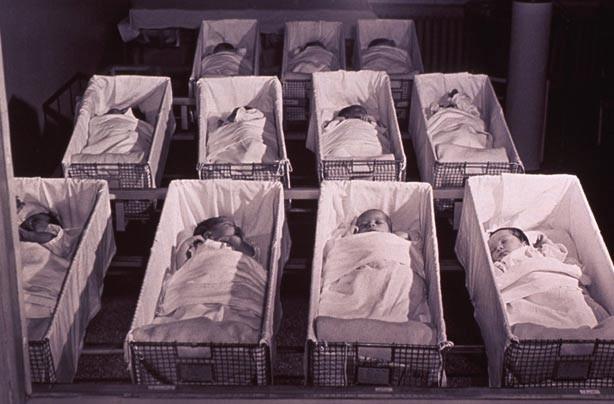 Babies in a hospital nursery