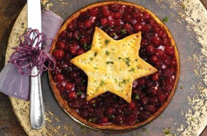 Christmas cranberry turkey pie