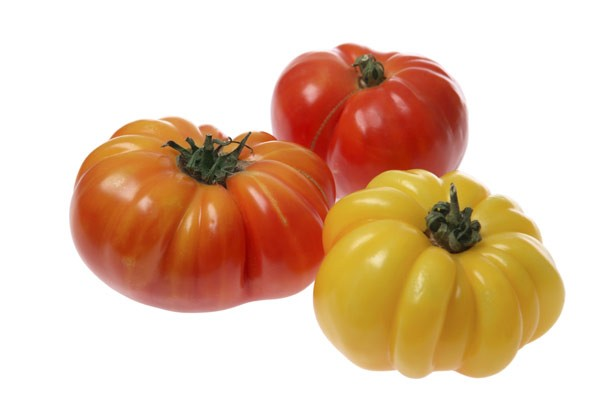 Large tomatoes