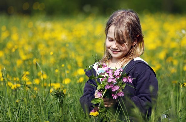 Little girl sitting in a meadow full of flowers