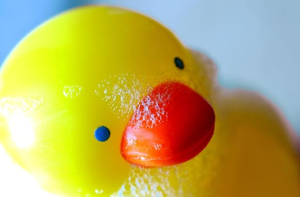 Rubber duck covered in bubble bath