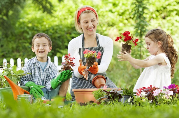 Money-saving gardening tips: 10 gardening tips that will save you a fortune!