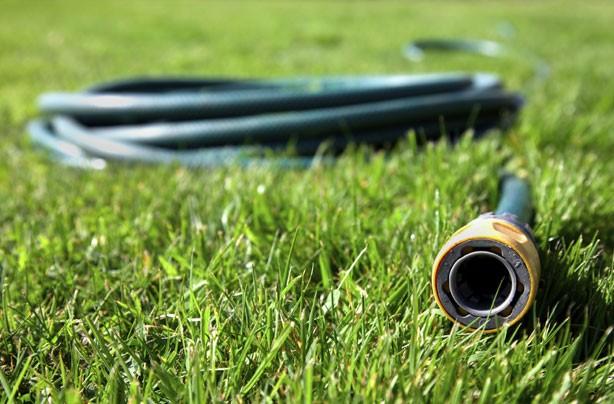Money-saving gardening tips: DIY watering system