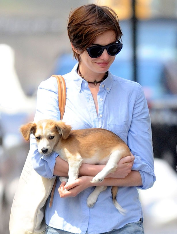 Celebrity pets: Anne Hathaway with puppy Esmerelda