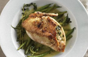 Tarragon chicken with braised green beans