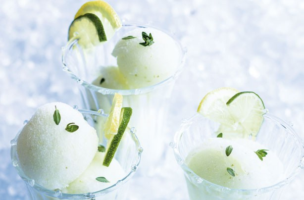 Summer dessert recipes: Gin and tonic sorbet