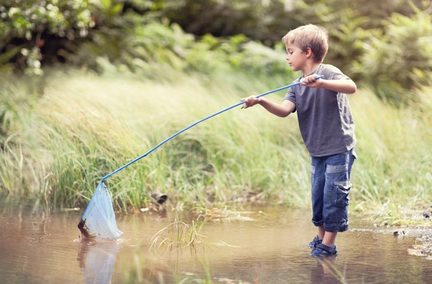 Little boy pond fishing