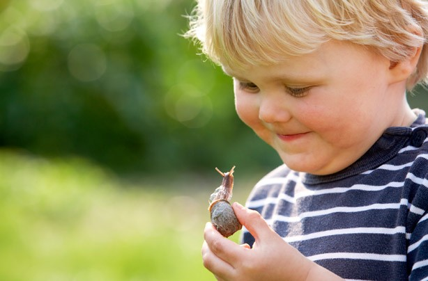 Little boy holding a snail