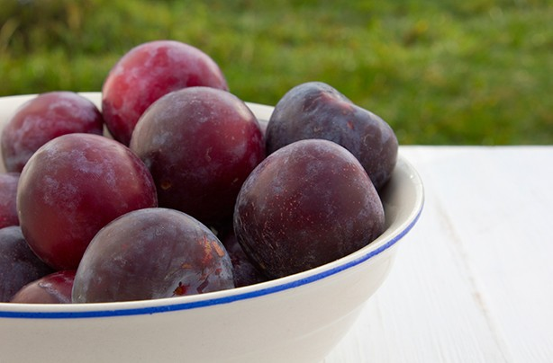 calories in fruit plums