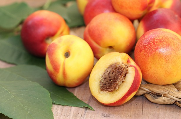 calories in fruit necterine