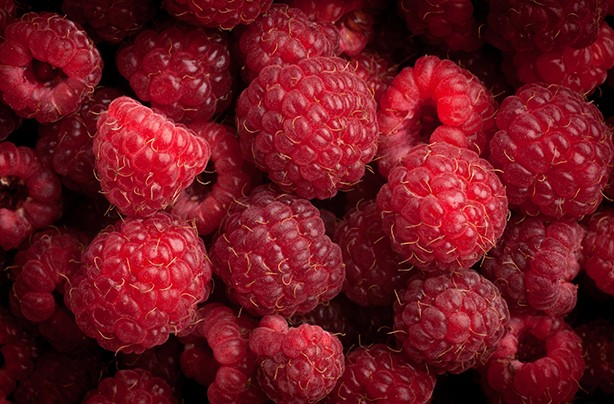 calories in fruit raspberries