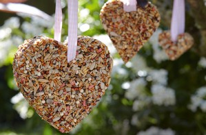 Essential bird feeder craft